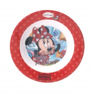 DisneyminniemelamineDinnerplate